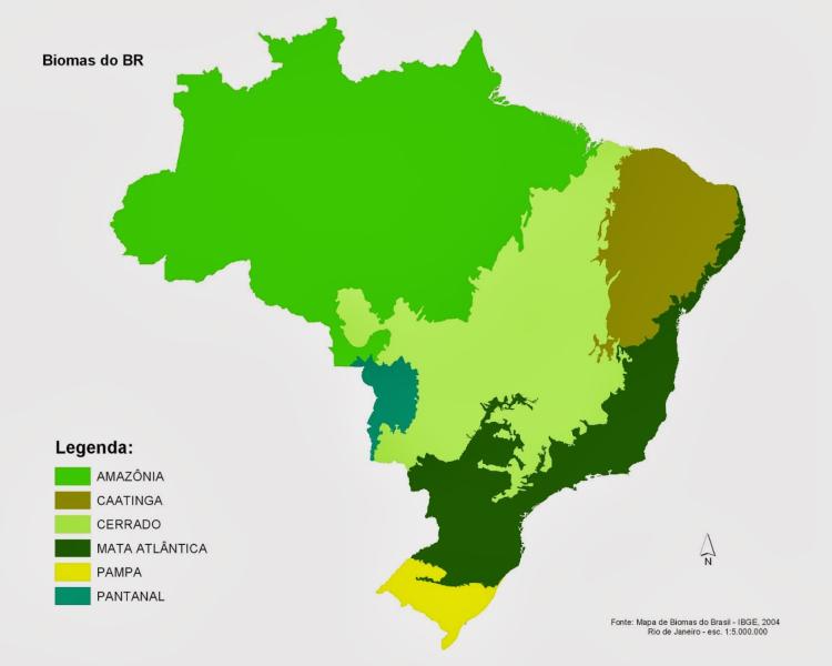 Pesquisadores Brasileiros Propõem Aumentar Limites Da